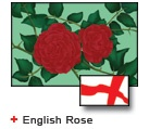 English Rose bunting